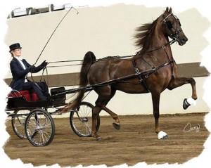 Fine Harness Horse